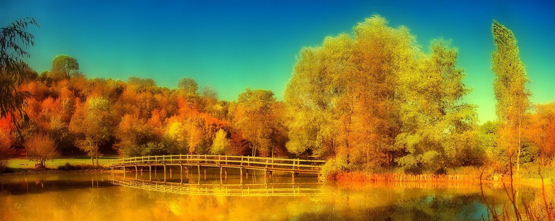 lake-874832_1920